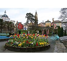 Flowers at Portmeirion Photographic Print
