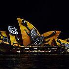 Spotted Tortoise Shell Sails - Sydney Vivid Festival by Bryan Freeman