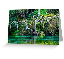 Emerald Paradise, Rainbow Springs Florida Greeting Card