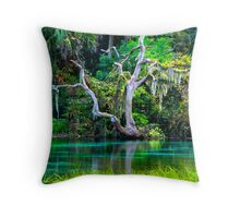 Emerald Paradise, Rainbow Springs Florida Throw Pillow