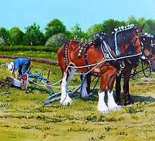 The Ploughing Match by Paula Oakley