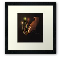 Bird of Lights named Kirmizi Framed Print
