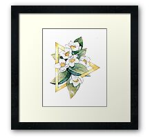 Flower Geometry: Mock-Orange Framed Print