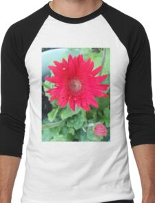 Daisy Flower Men's Baseball ¾ T-Shirt
