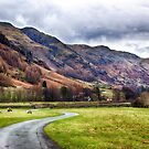 Langdale Valley by Vicki Field
