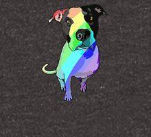 Rainbow Pibble Hoodie