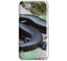 the reptile - kp iPhone Case/Skin