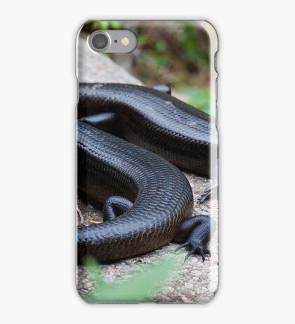 the reptile - kp iPhone Case/Skin