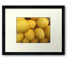 Cucurbitaceae Framed Print