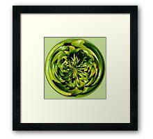 Leaf Sucker Framed Print