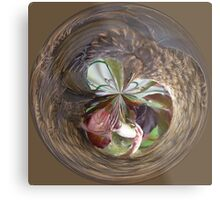 Feathered in the spherical Metal Print