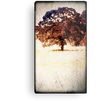 Lone Tree Meadow Metal Print