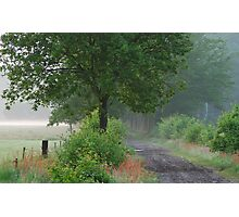 Looking for the morning ghosts Photographic Print