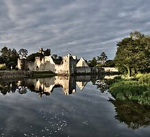 Adare Castle  by Martina Fagan