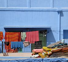 India Photograph; Blue Rooftop  by somepigeon