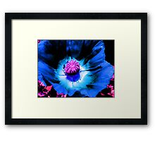 Blue Poppy 1 (F.21) Framed Print