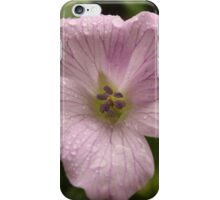Beauty After The Rain iPhone Case/Skin