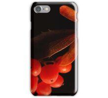 Leaves & berries iPhone Case/Skin