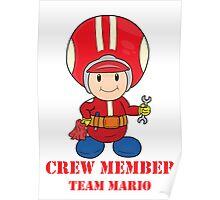 Team Mario Crewmember Poster