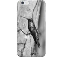 Hummingbird on Barbed Wire iPhone Case/Skin