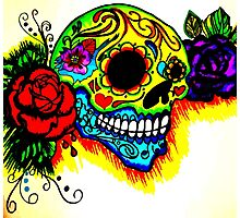 Skull and colors  Photographic Print