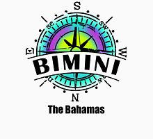 Bimini, The Bahamas Women's Fitted V-Neck T-Shirt