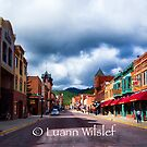 Deadwood by Luann wilslef