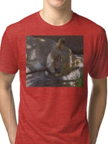 Sleeping Lioness in Stained Glass Tri-blend T-Shirt