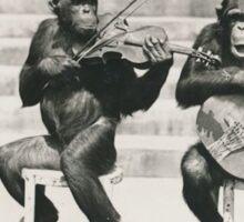 Monkey Musicians - Chimp Bluegrass Sticker