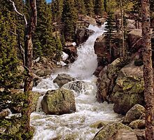 """Alberta Falls #2"" RMNP by Johnny Gomez by johnny gomez"