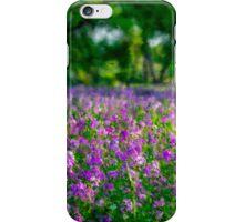 Lavender Grove iPhone Case/Skin