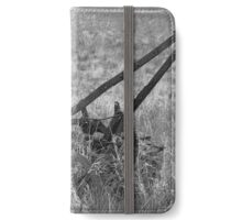 Antique Plow Abandoned in a Field iPhone Wallet/Case/Skin