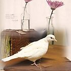 Little White Dove 5 - what good shall I do this day? by Maree  Clarkson
