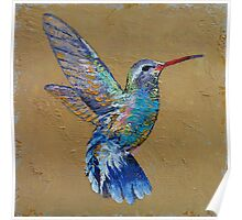 Turquoise Hummingbird Poster