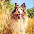 Go Golden by BellatrixBlack