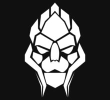 Turian skull by icedtees