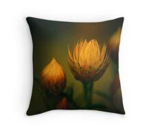Wild Flower Still Life Throw Pillow