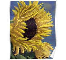 Sunflower Profile DP151006b-14 Poster