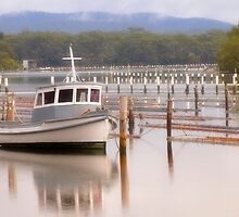 Calm Waters Forster NSW 01 by kevin chippindall