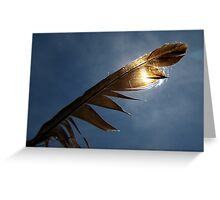 Magpie feather Greeting Card