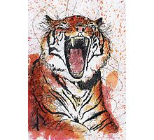Scribble Ink Tiger Photographic Print