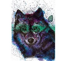Scribble Ink Wolf Photographic Print