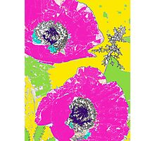 Punch of Pink Poppies II Photographic Print