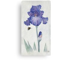Blue Iris with Bee Canvas Print