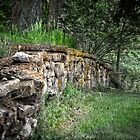 The old Stone Wall by LarryB007