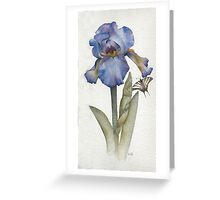 Blue Iris with Swallowtail Butterfly Greeting Card
