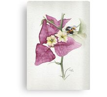 Bougainvillea with Bee Canvas Print