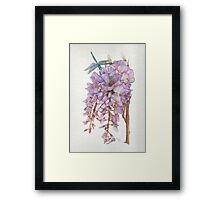 Wisteria Flower with Blue and Green Dragonfly Framed Print