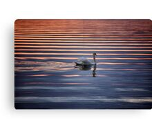Swan Lake Abstract Canvas Print