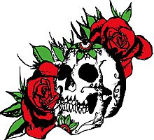 Roses and skull Photographic Print